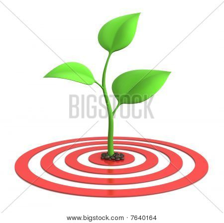 Sprout On Target