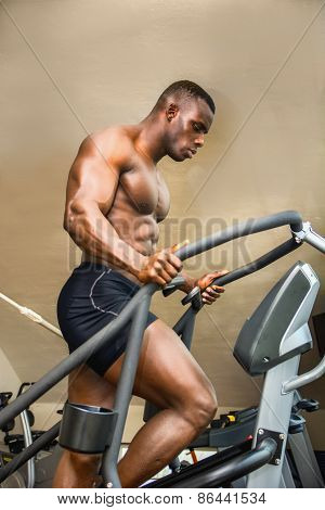 Muscular Black Male Bodybuilder Exercising On Step Machine In Gym