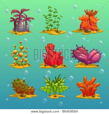 Cartoon algae