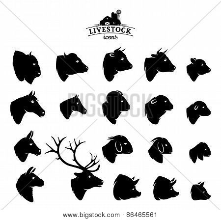 Vector Livestock Icons Isolated on White