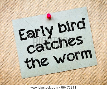 Early Bird Catches The Worm