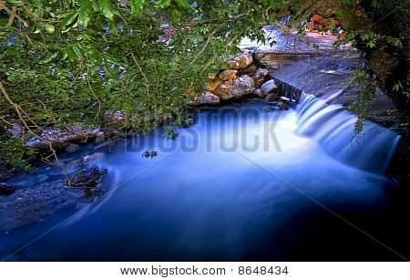 Flowing River Under Trees