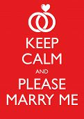 Poster Illustration Graphic Vector Keep Calm And Please Marry Me for different purpose poster