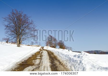 Snowy and slippery winter rural road with a turning among forest