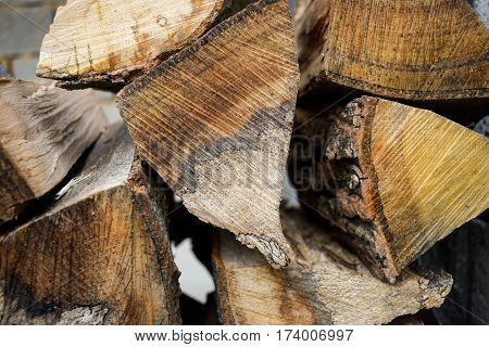 Wood for kindling fire. Raw. Environment. Cut trees