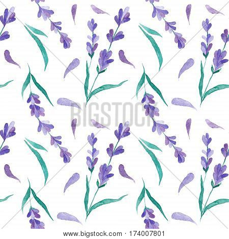 Watercolor vector pattern with Lavender. Hand painting. Watercolor. Seamless pattern for fabric, paper and other printing and web projects.