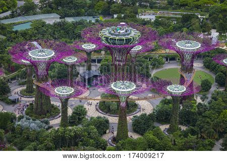 SINGAPORE - January 29 2017 : Garden by the bay, view from the roof top at Marina Bay Sands.