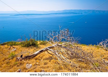 Island Of Brac Desert Coast View