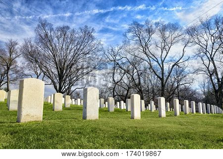 Rows of blank tombstones in a cemetery on an early spring day.