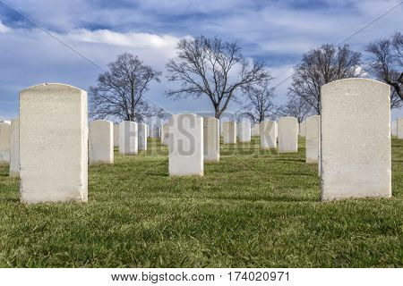 Rows of blank headstones in a cemetery.