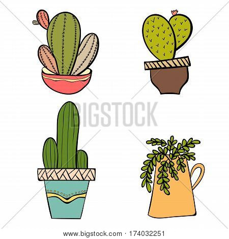 Cactus in pots. Cactus isolated on white background. Indoor plants in a flat style. Natural background with cacti. Vector illustration.