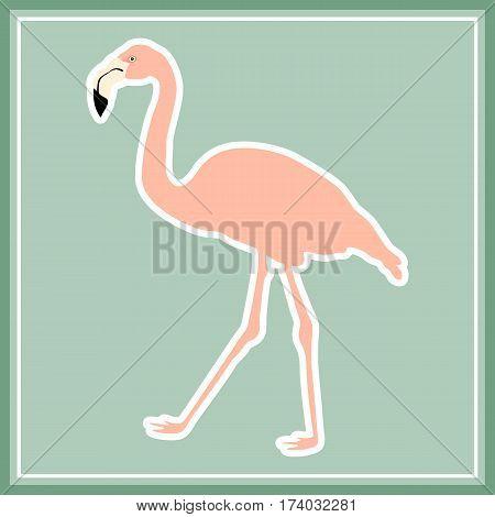 Hand drawn pink flamingo. Exotic bird. Vector illustration.