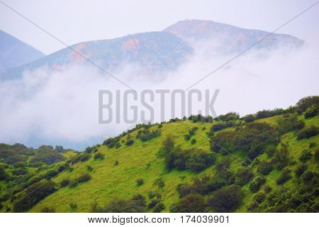 Rolling hills with lush green grasslands and chaparral plants taken at the San Gabriel Mountain Foothills in Claremont, CA during a rain storm