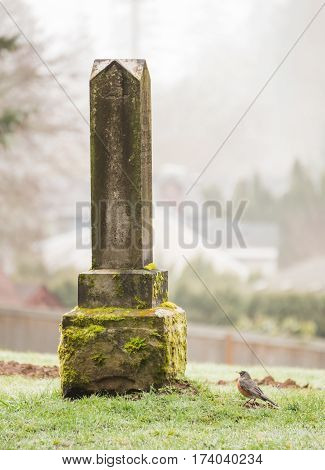 Grave Stone At Cemetery