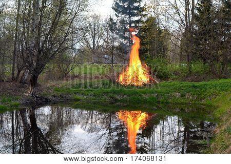Fire blazing on spring pond coast in park