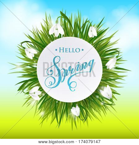 Round Natural Frame With Grass And Flowers. Vector Eps10