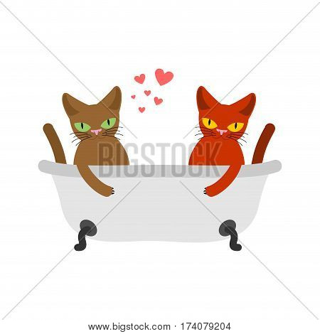 Cat Lovers In Bath. Lover Joint Bathing.. Pet Romantic Date. Cats Lifestyle