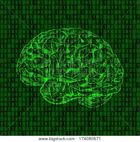 Background with numbers and brain sketch. Green numeric background. VECTOR.