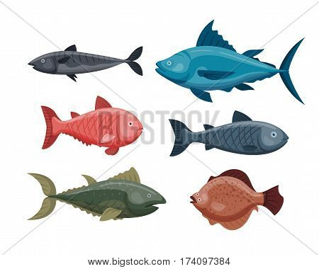 Cute fish cartoon funny swimming graphic animal character and underwater ocean wildlife nature aquatic fin marine water vector illustration. Colorful wild drawing mascot adorable tropic fauna.