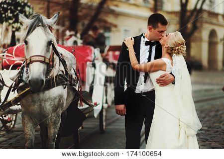 Groom Kisses A Bride Behind A Carriage