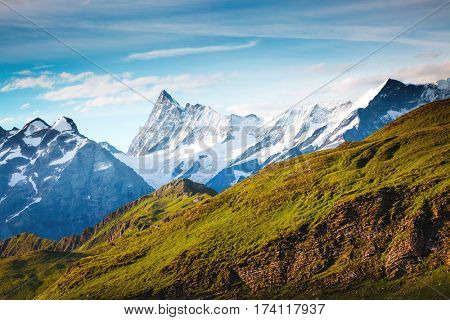 Great view of alpine hill. Picturesque and gorgeous scene. Popular tourist attraction. Location place Swiss alps, Grindelwald valley in the Bernese Oberland, Europe. Discover the world of beauty.