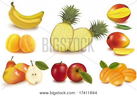 Photo-realistic vector illustration. Big group of exotic fruit.