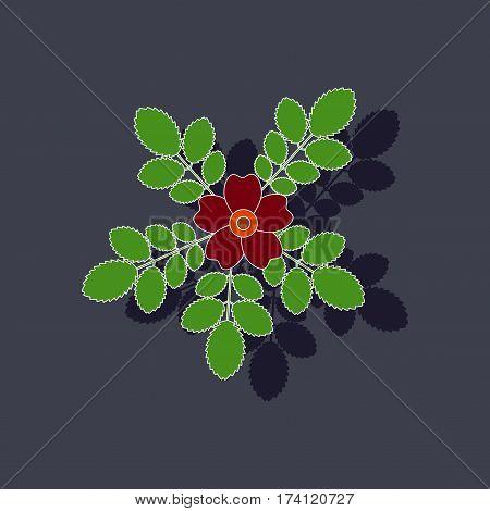 paper sticker on stylish background of rosa majalis