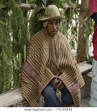 Portrait of a Native Peruvian man wearing typical andin robe and attending traditional Inca wedding ceremony in the Amaru indigenous community Andes Mountain. October 22, 2012 - Peru