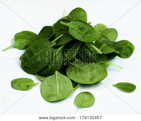 Heap of Small Raw Spinach Leafs closeup on Light Blue Wooden background