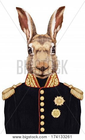 Portrait of Hare in military uniform. Hand-drawn illustration, digitally colored.