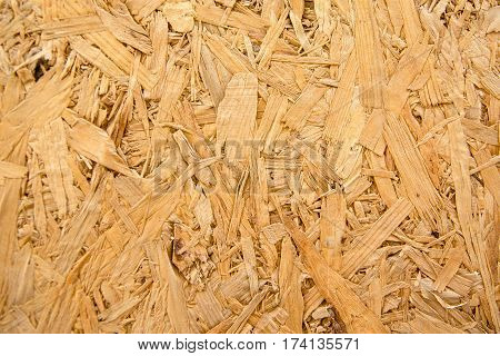 Surface plywood texture board for the background.