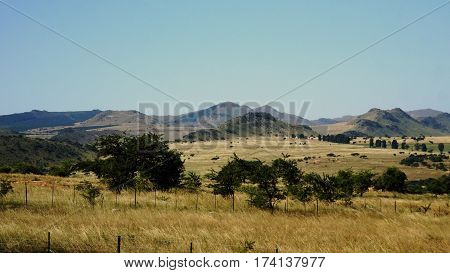 mountainous landscape in the Kingdom of Swaziland, hills and single trees, barren vegetation in autumn, cloudless sky