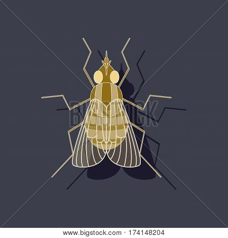 paper sticker on stylish background of fly