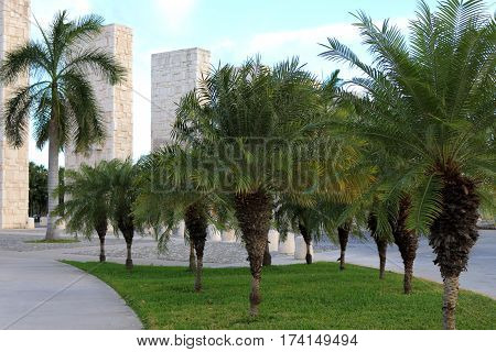 Palm trees line an entryway in downtown Cancun, Mexico.