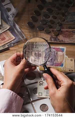 Polish Zloty And Magnifying Glass In The Woman's Hand