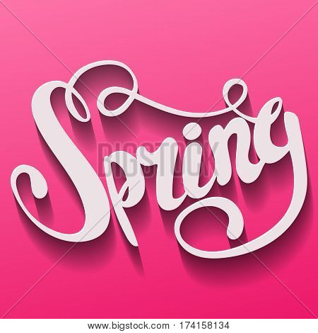 Spring lettering. Hand written Spring poster. Modern hand lettering. Text Spring on a pink background. Modern Calligraphy. Vector illustration