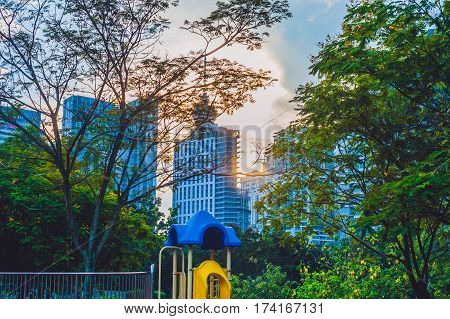 Green Park With Tropical Plants On The Background Of The City Skyline. Ecology Concept