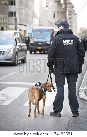 NEW YORK - JAN 13 2017: NYPD Det. Steven McDonald funeral procession and service at St Patricks Cathedral, 5th Avenue, Manhattan - NYPD Counter Terrorism Bureau Canine Unit on duty.