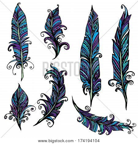 Set of ornamental Feather tribal design. Ink hand drawn illustration with different indian feathers in blue and violet colors.