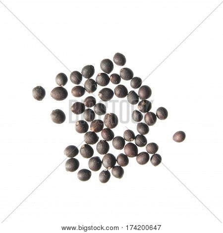 Seeds of sage (Salvia officinalis) on white background
