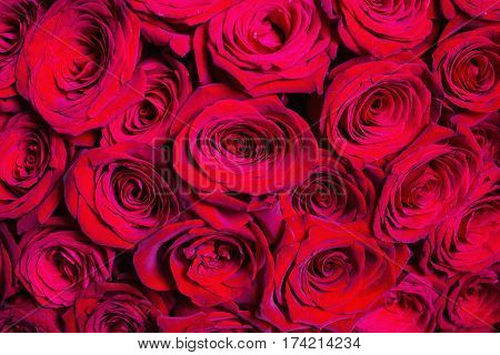 Big beautiful bouquet of red roses. Texture colors of roses. A roses gift for a wedding birthday. Valentine's Day. Summer roses