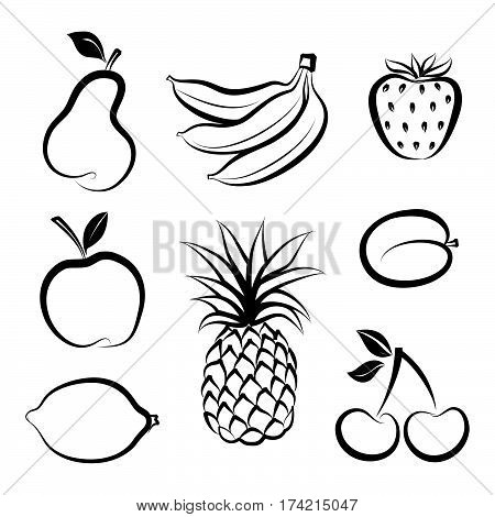 Fruit icon set. Hand drawn sketch collection of fruita and berries.