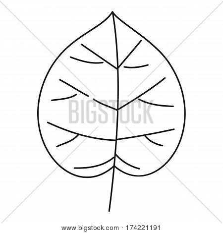 Wide leaf icon. Outline illustration of wide leaf vector icon for web