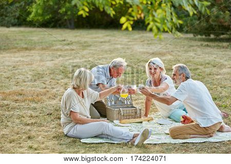 Senior citizens having fun at a picnic in summer in the park