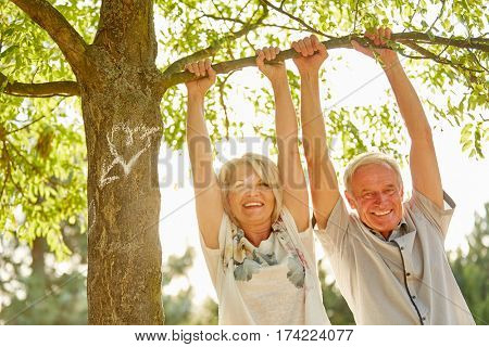 Senior couple in love happily hanging from a tree in summer