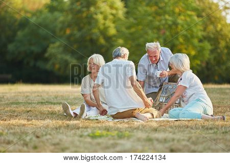 Group of senior citizen friends making a picnic in the park in summer