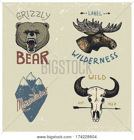 set of engraved vintage, hand drawn, old, labels or badges for camping, hiking, hunting with moose face, grizzly bear, mountain peaks and buffalo skull