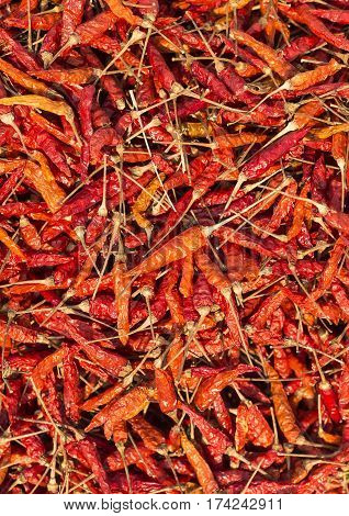 Pile of Dried Red Chili Peppers Background. (Top View)