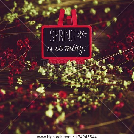 a blackboard in a red easel with the text spring is coming written in it surrounded by many red and yellow small flowers, with a retro effect