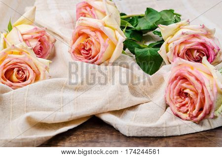 The beautiful Pink roses on tablecloth background.